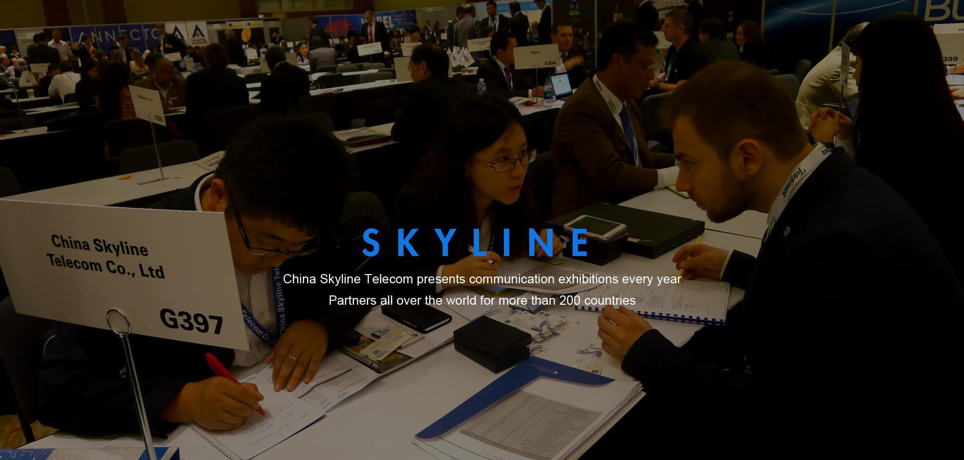 China Skyline Telecom