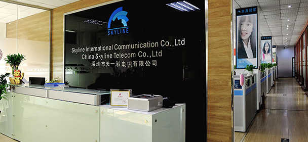 International wholesale voice business